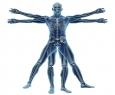 Ortopediskās preces