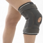 Knee Support with Hinged Stabilizing